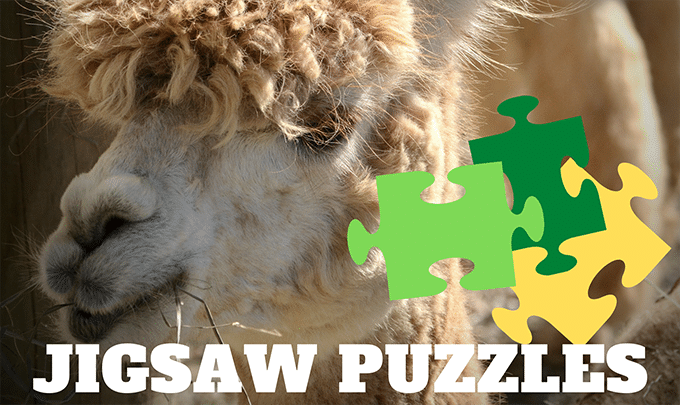 Virtual Jigsaw Puzzles